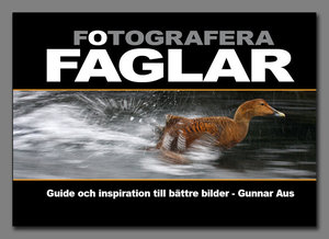 Fotografera fåglar